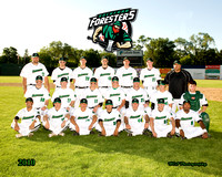 Foresters Team and Individuals - 2010