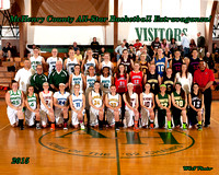 MCHENRY CO. ALL-STARS 2015 - GIRLS